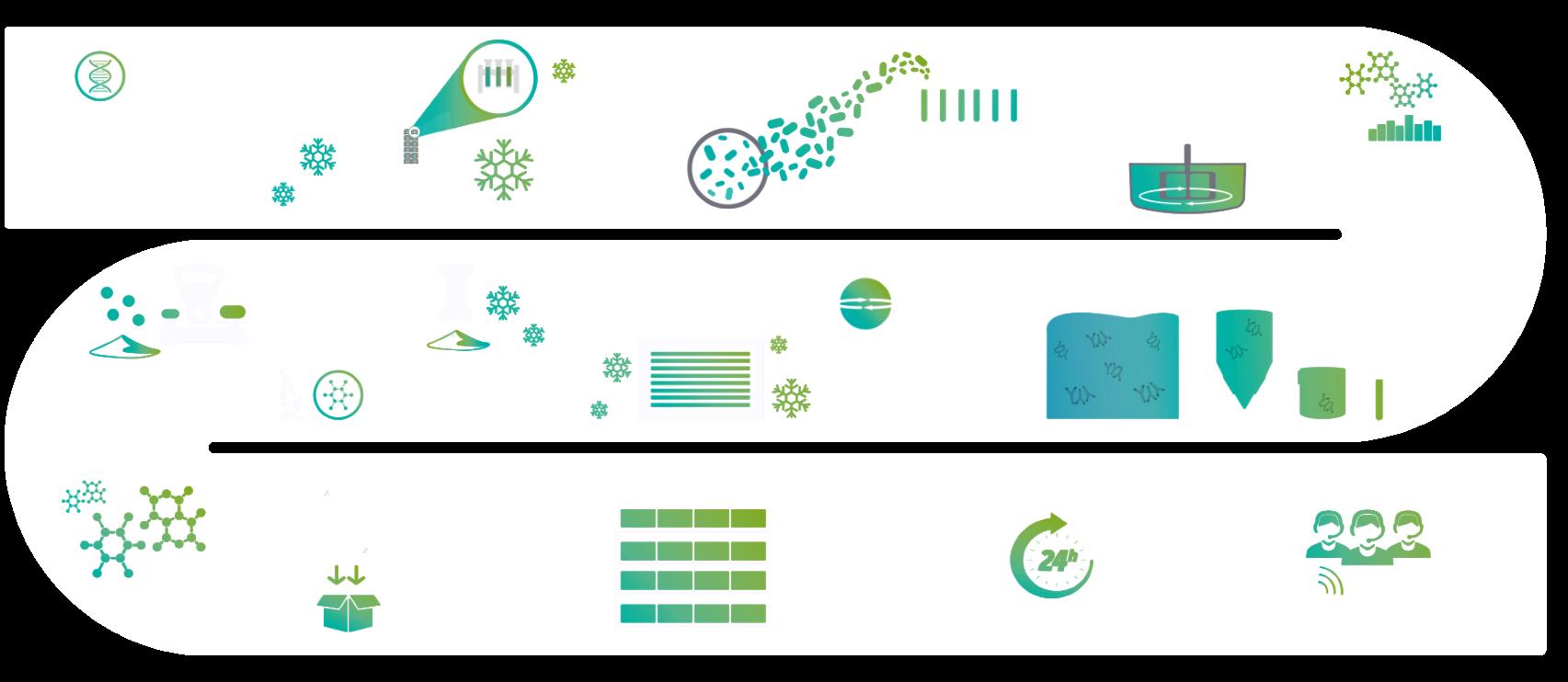 production process - custom fermentation services - Probiotics by Sacco System
