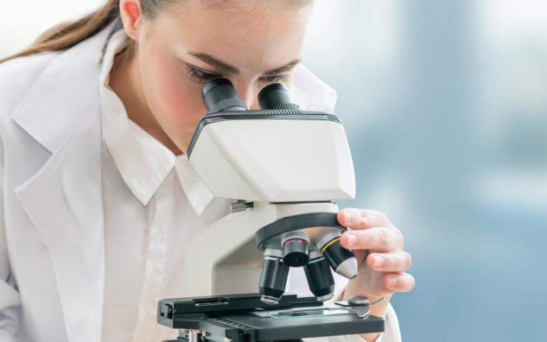 research & development - custom fermentation service - Probiotics by Sacco System