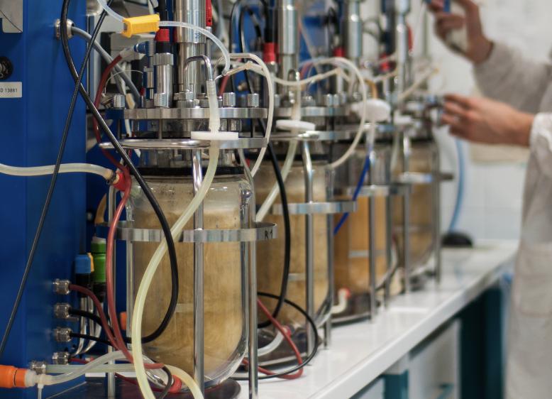 pilot plant - custom fermentation service - Probiotics by Sacco System
